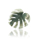 MONSTERA Silver Brooch